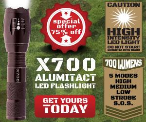 flashlight x700